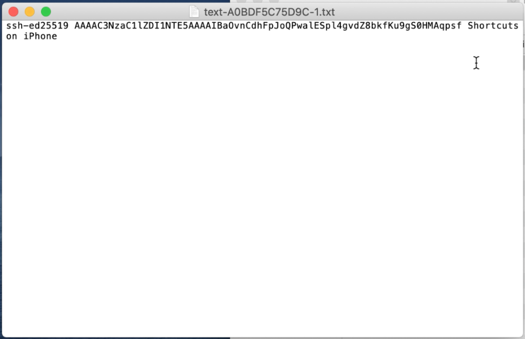 Screen shot of ssh key in text document